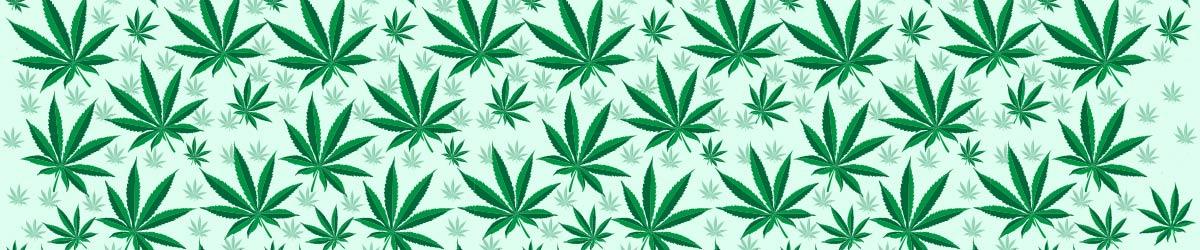 weed-t-shirts-1600x250